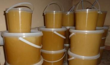 Пластиковые ведра и банки - лучшее решение в сезон сбора меда.